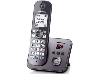 Радиотелефон Panasonic KX-TG 6821CAM серый