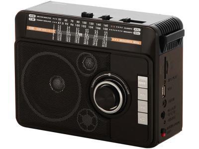Радиоприемник Ritmix RPR-205 черный