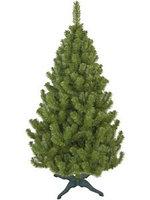 Новогодняя елка Ёлкиторг Лесная 2827248 180 см