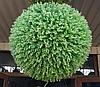 Искусственный самшит, шар (миртовое дерево) без кашпо, D 44 см