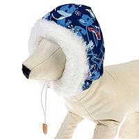 Шапочка зимняя 'Эскимос', XS-S, плащевка-мех, объем морды 23 см, длина шапки 18 см микс