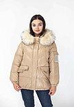 Короткая куртка fashion dress, фото 5