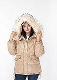 Короткая куртка fashion dress, фото 6