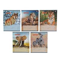 Тетрадь 24 листа клетка 'Грациозные животные', обложка мелованный картон, МИКС (комплект из 25 шт.)