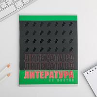 Предметная тетрадь, 48 листов, уф-лак ШРИФТЫ со справочными материалами «Литература»