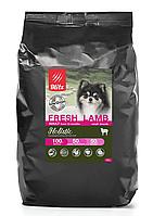 Низкозерновой сухой корм для собак мелких пород Blitz Holistic Fresh Lamb Small (Low Grain) ягненок