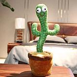 Танцующий кактус - музыкальная плюшевая говорящая игрушка, фото 5