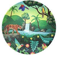 Тарелка Chasing Waterfall Tommy Lise