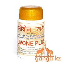 Ливон Плюс - здоровье печени (Livone Plus SHRI GANGA), 100 таб