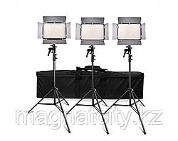 Осветитель светодиодный тройной с регулировкой TL-600AS