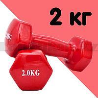 Гантели с виниловым покрытием для фитнеса 2 кг в ассортименте