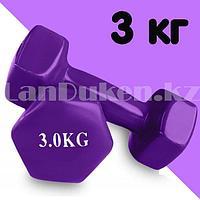 Гантели с виниловым покрытием для фитнеса 3 кг в ассортименте