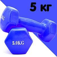 Гантели с виниловым покрытием для фитнеса 5 кг в ассортименте