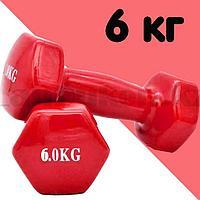 Гантели с виниловым покрытием для фитнеса 6 кг в ассортименте
