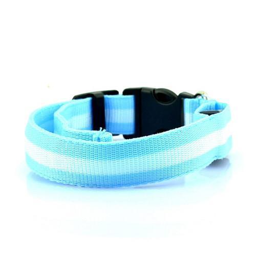 Светодиодный ошейник для собак usb, цвет голубой, размер XL