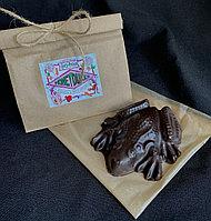 Шоколадная лягушка, Гарри Поттер