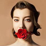 Силиконовый эротик кляп для рта Roses, фото 4
