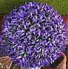 Искусственный самшит, шар (фиолетовый) без кашпо, D34 см