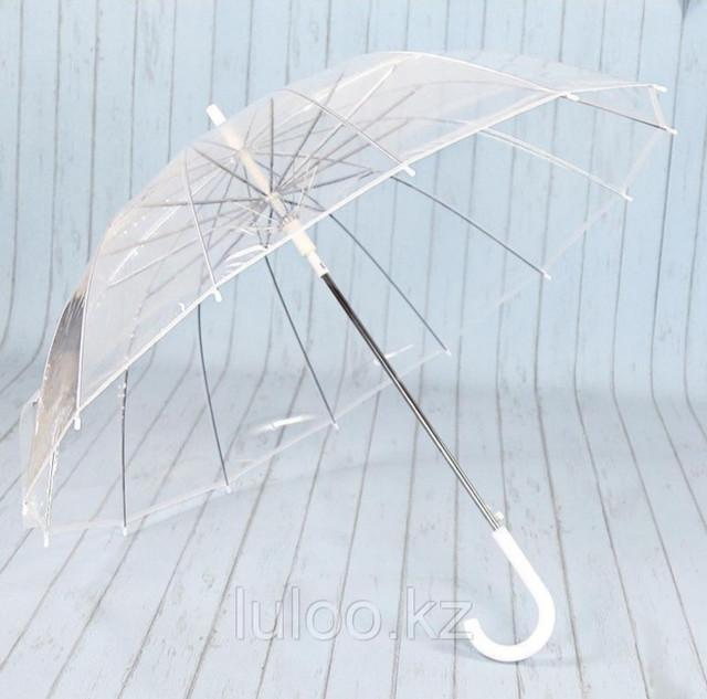 Зонты / Дождевики