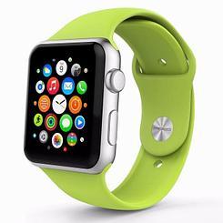 Ремешок For Apple Watch 42mm COTEetCI W3 CS2086-GR gel Green