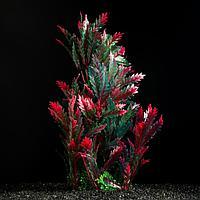 Растение искусственное Красно-зеленое 28 см