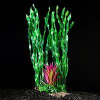 Растение искусственное аквариумное на платформе 30 см