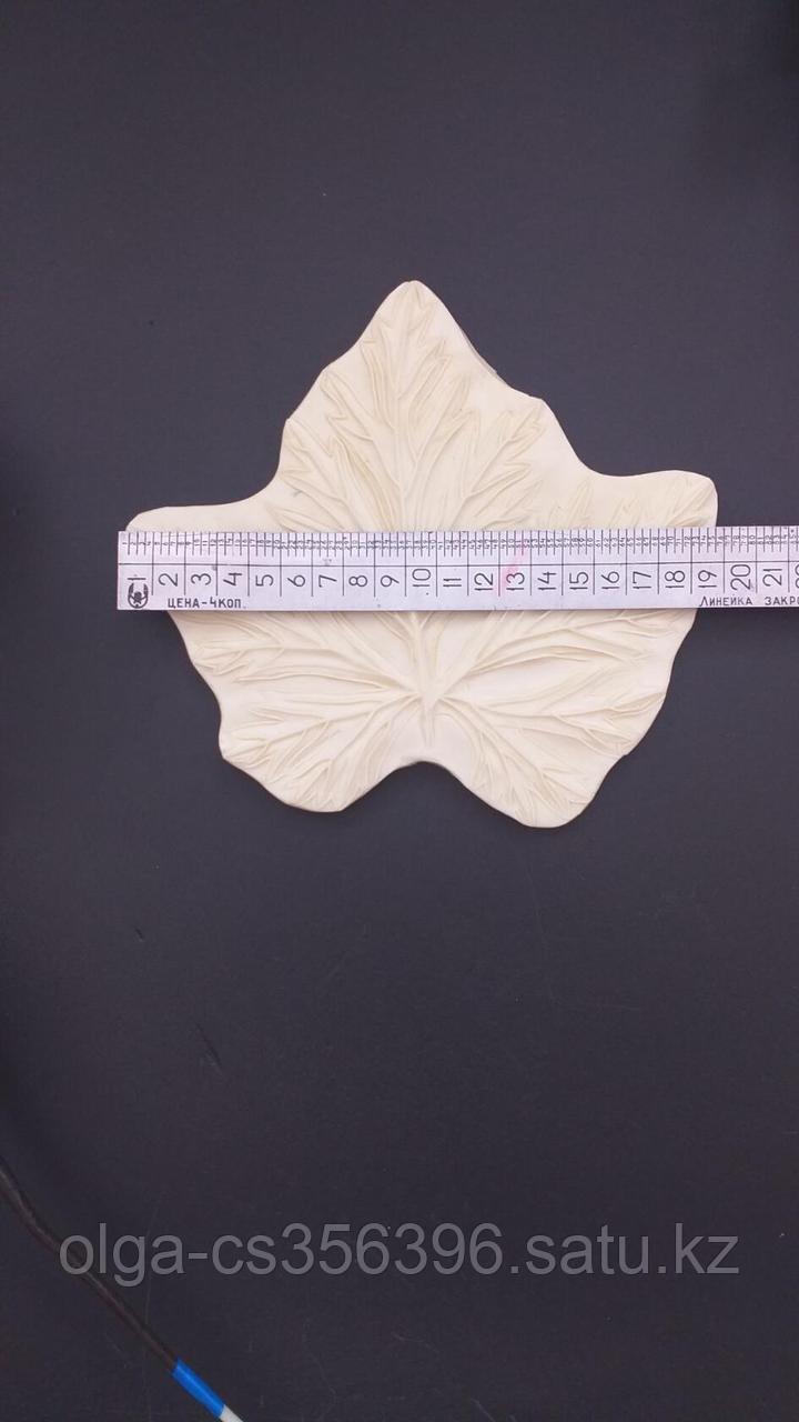 Молд пластиковый Лист. Размер: 16 см.  * 19 см.   Creativ  2769 - 2