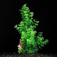 Растение искусственное аквариумное зеленое 6 х 24 см