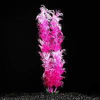 Растение искусственное аквариумное розовое 4х 20 см