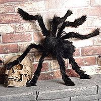 Паук декоративный маленький для Хэллоуина черный 44 см