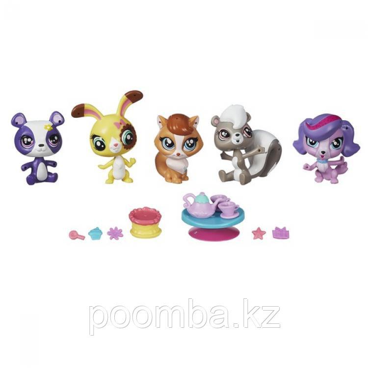 Мини-игровой набор Littlest Pet Shop - День рождения