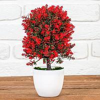 Бонсай 'Пышное деревце с цветами' 12*25 см, микс