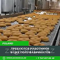 Требуются работники в цех полуфабрикатов / Польша