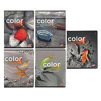 Тетрадь 48л, скр., А5, клетка, 7847/5-EAC твин УФ Color splash: цветные объекты на черно-белом