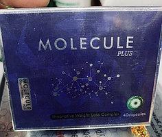 Molecule Plus