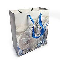 Пакет Новогодний для подарков 24х18х8см 3D
