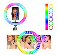 Кольцевая лампа - цветная RGB светодиодная 20-26-30 см