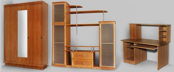 Корпусная мебель на заказ со сборкой