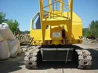 Кран гусеничный РДК-25, RDK-250-1, RDK-250-2, RDK-250-3, RDK-250-4 Polar (производства TAKRAF Германия) стреловой, самоходный на  гусеничном ходу, дизель-электрический, полноповоротный, грузоподъемностью 25 тонн. Вид рабочего оборудования Стреловое, башенно-стреловое.