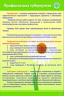 Профилактика ТУБЕРКУЛЕЗА, фото 1