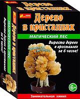 Научные игры: Сад пушистых кристаллов. Магический лес ( оранжевое)