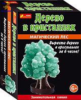 Научные игры: Сад пушистых кристаллов. Магический лес (зеленое)