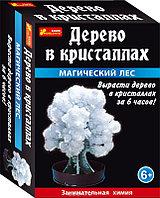 Научные игры: Сад пушистых кристаллов. Магический лес (белое)