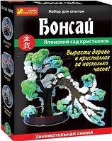 Научные игры: Бонсай