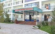 Сарыагаш Санаторий Алтынай, фото 5