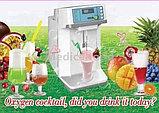 Оборудование для приготовления кислородных коктейлей, фото 2