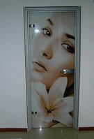 Цельно стеклянная дверь в алюминиевой коробке.