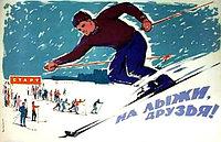 Лыжи и аксессуары к ним