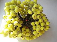Тычинки для цветов, мини ягодки, мини кустики