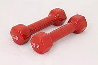 Гантели для фитнеса 2LB Red, фото 1